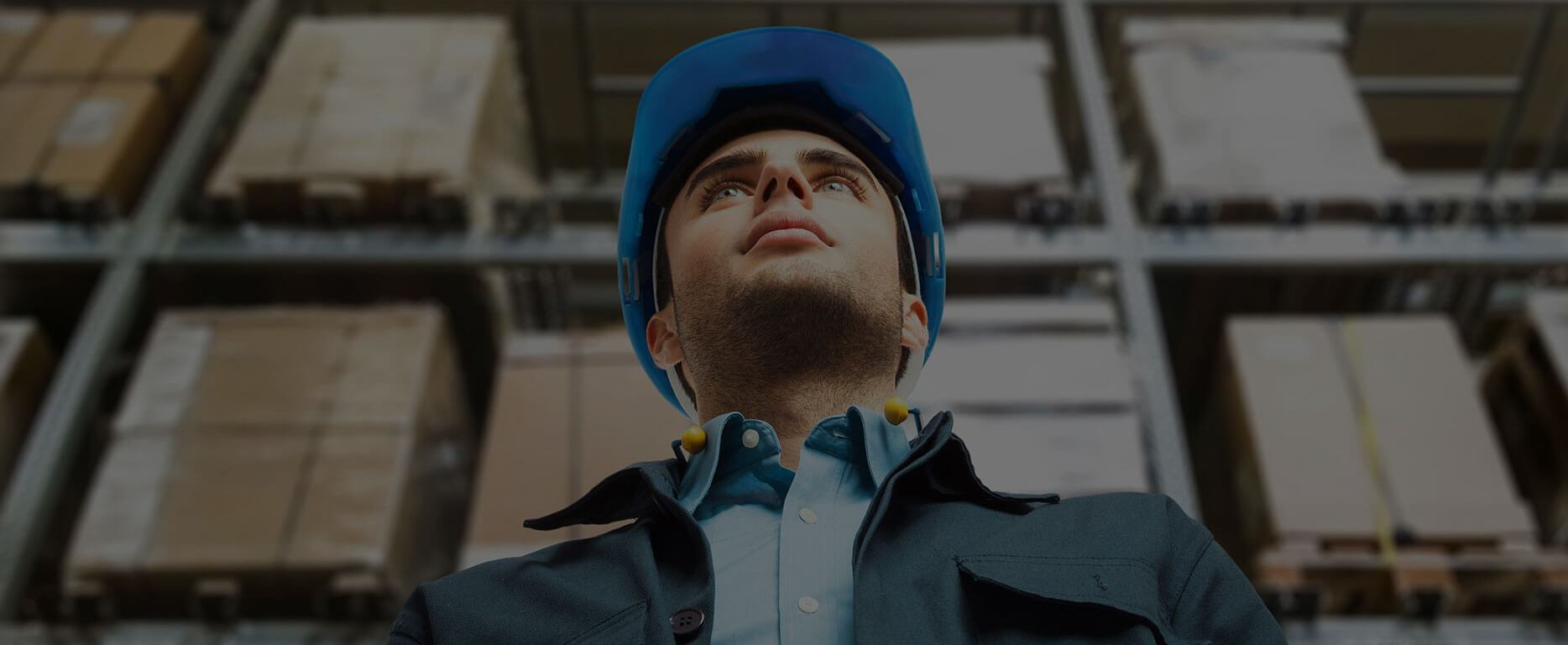 Control Your Business With BoxOn Warehouse Management Software
